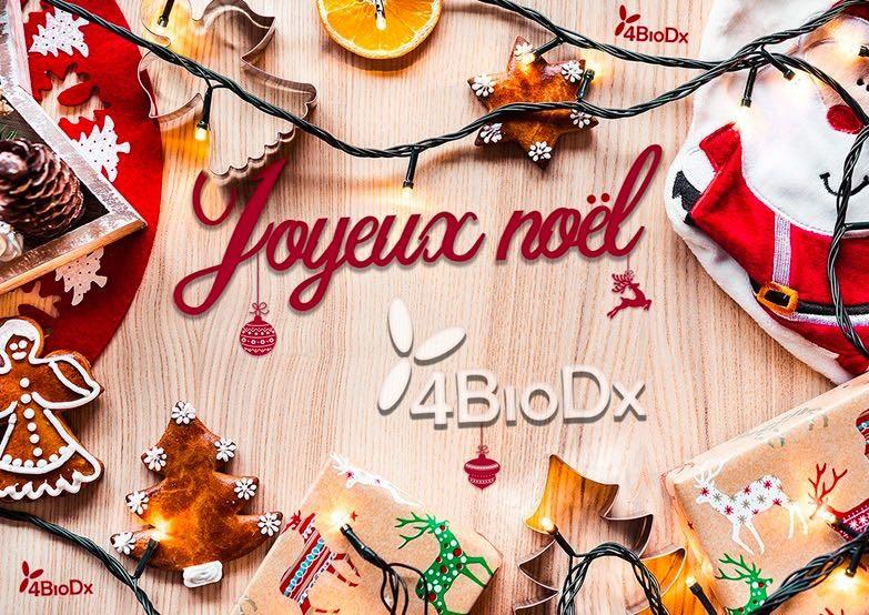 Joyeux Noël! Merry Christmas!-image