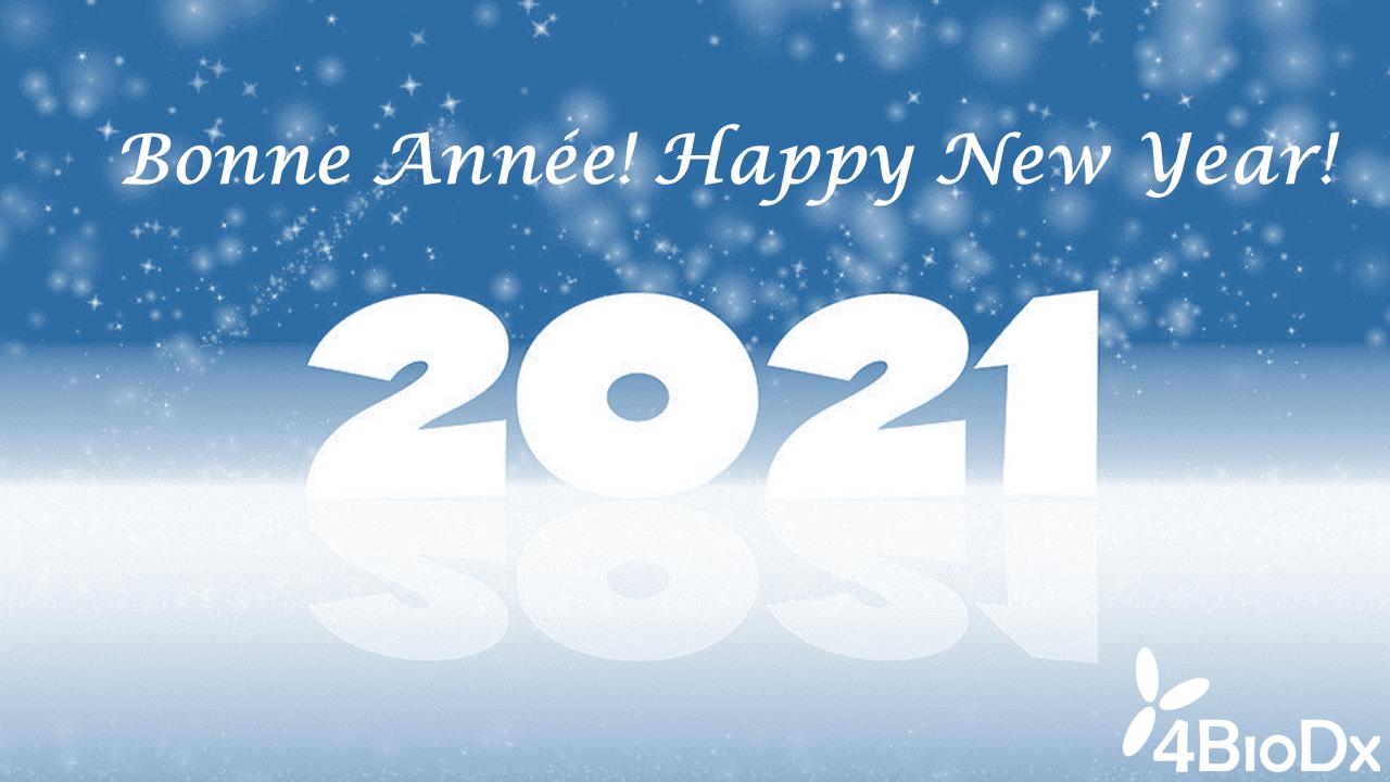 Bonne Année 2021-image