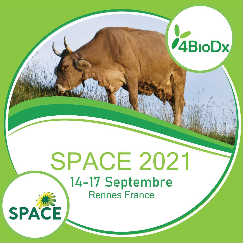 SPACE 2021 (Rennes, France)-image