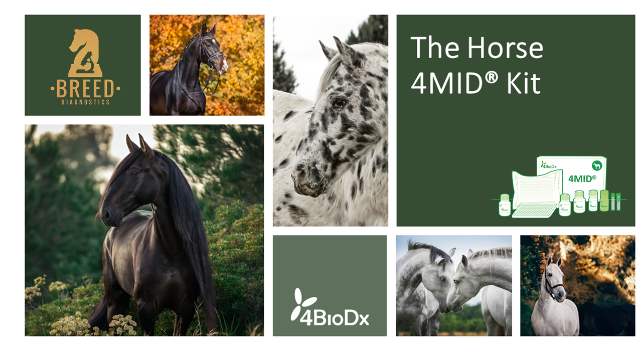 Breed diagnostics and 4BioDx